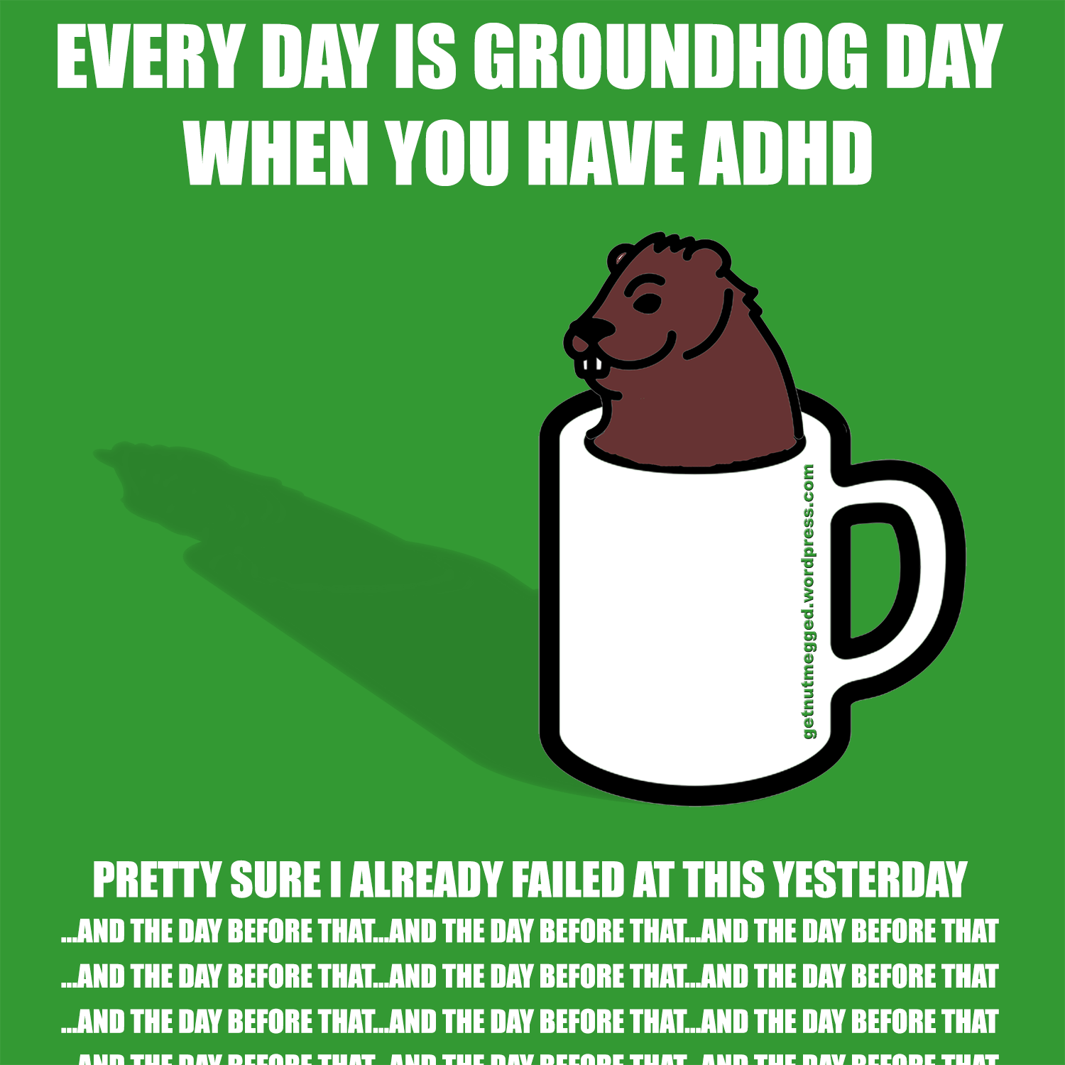 Groundhog Day Today Video